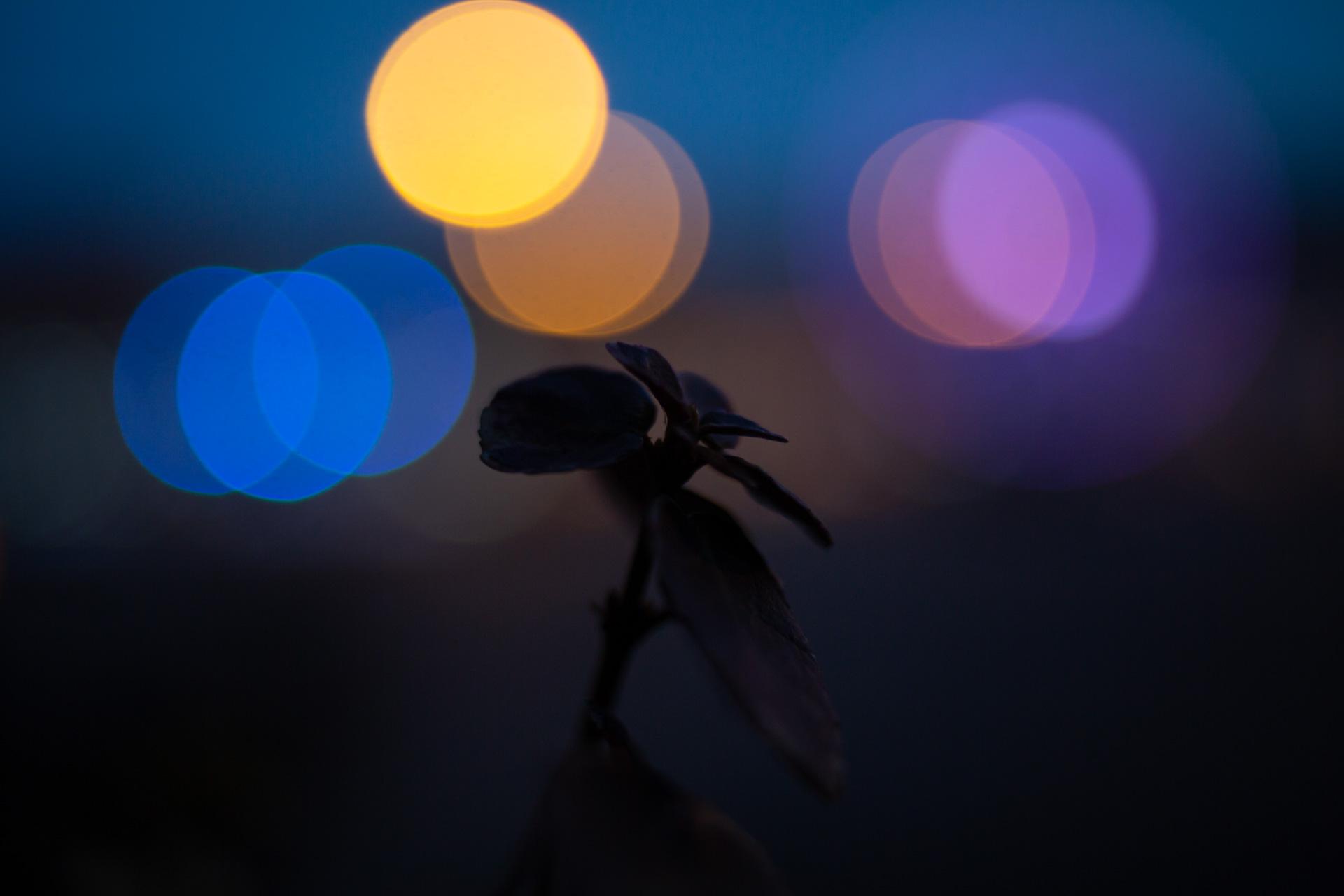 Nebănuitele lumini ale orașului